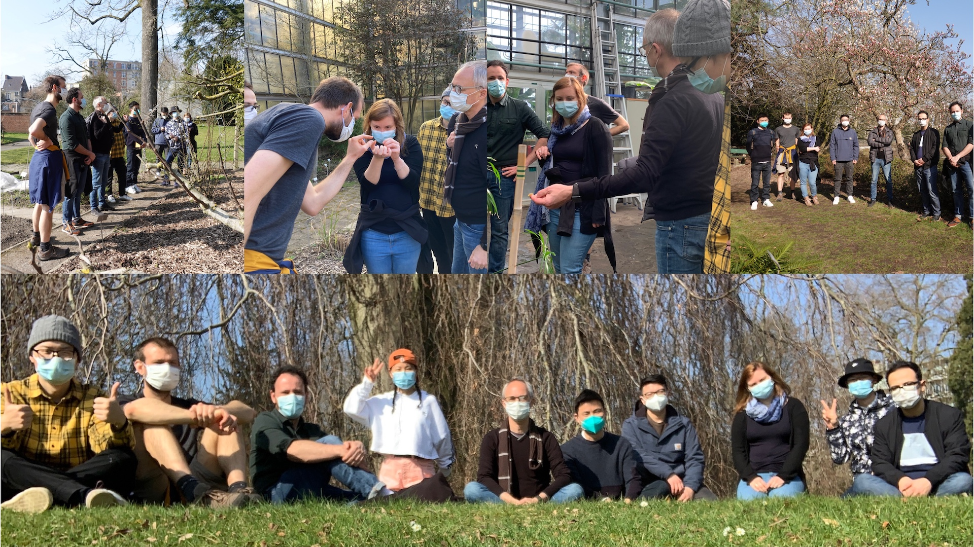 Hunting for polyploids 2021