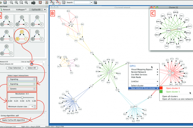 Cytoscape screenshot