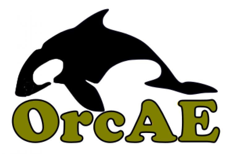 Orcae